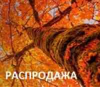 Осенняя акция 2017 в САОТРОН